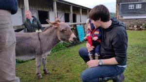 Minature donkey - Close to nature - farm cottages devon