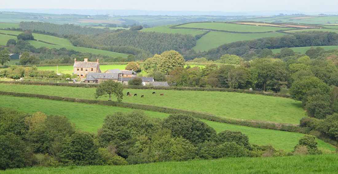 Birchill farm and cottages - langree devon