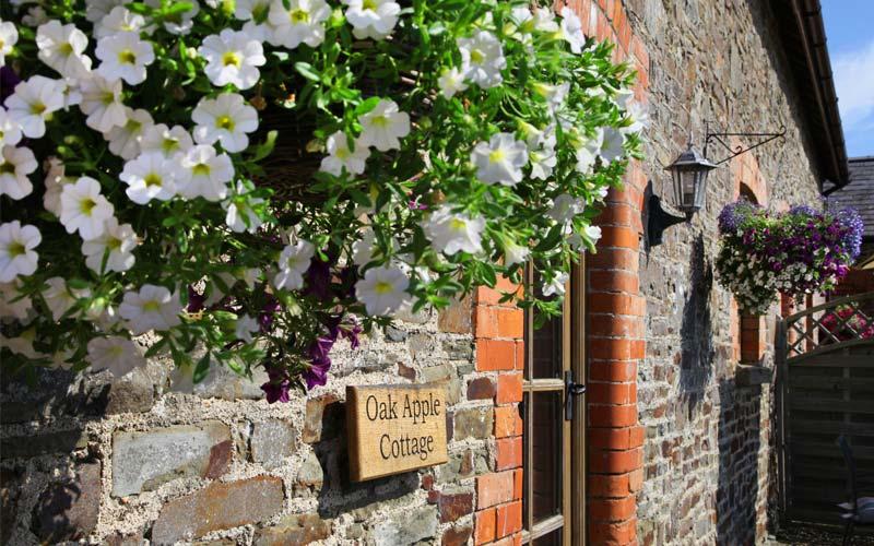Oak-Apple-Cottage - farm cottages devon