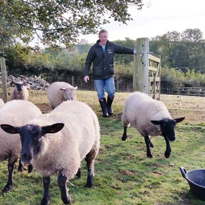 Simon with our sheep - farm cottages devon